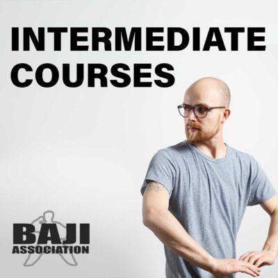 Intermediate Courses